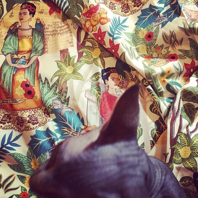 Frida Kahlo + Kalbo. #sewing