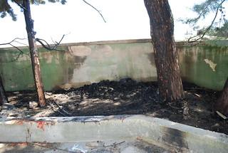 Incendio cimitero (2)