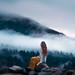 Morning Meditation by Elizabeth Gadd