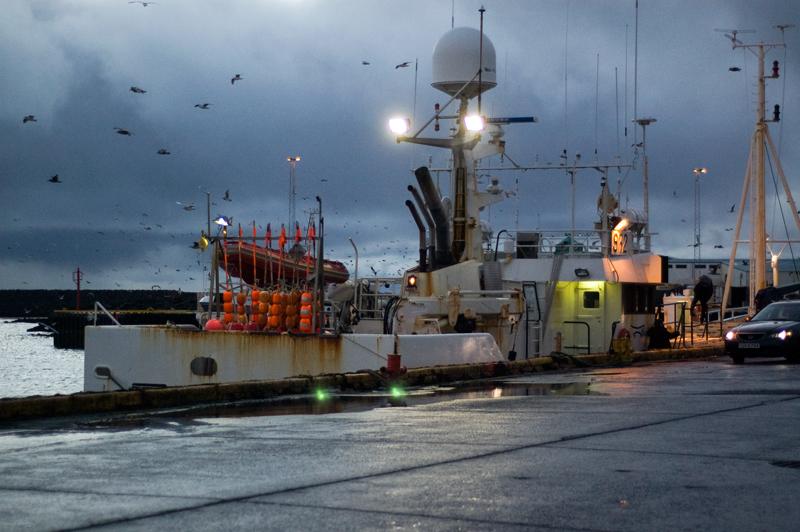 Bacalhau da Islândia, Grindavik