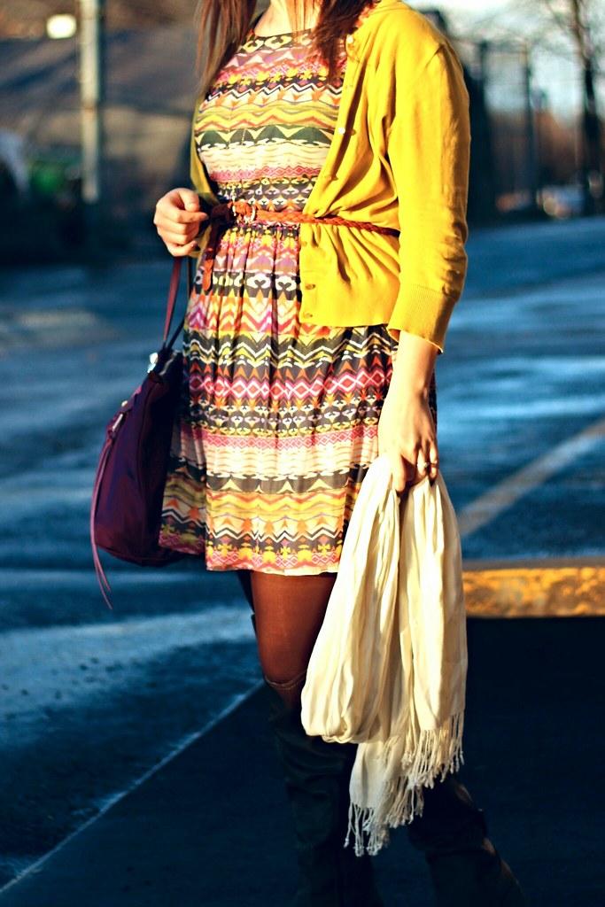 Anthropologie Flared Caraz Dress (5)