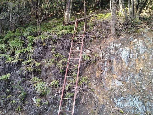 眉山 林道 梯子
