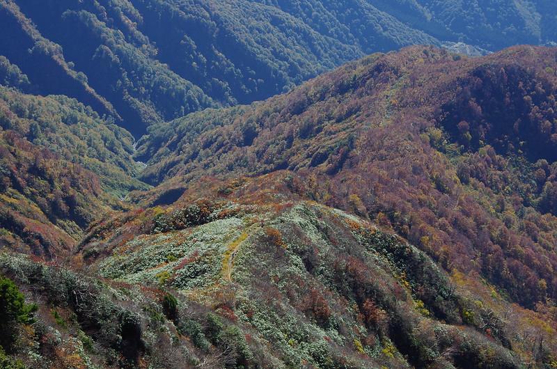 20141019-八海山(saku)-0094.jpg