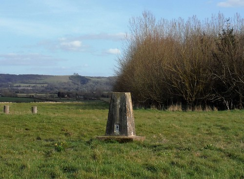 Trigpoint in Michael R. Roads Community Woodland