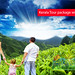 kerala tour packages with family by bestayurveda