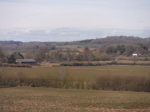 Bucklebury Village and Hawkridge Wood