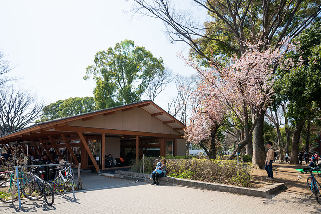 Exterior of Starbucks Coffee Ueno Onshi Park branch (スターバックスコーヒー上野恩賜公園店)