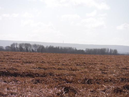 Boer War Memorial, Chiltern Hills, from field near Haddenham