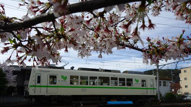2016/04 叡山電車×NEW GAME! ラッピング車両 #88