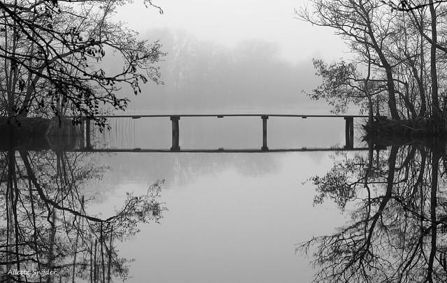 Reflections in the mist ...