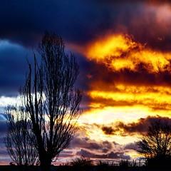 En algún lugar de Castilla...  #whiledriving #igerscastilla #alpha6000 #reyes #sunset #atardeceres