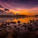 Every Sunset Needs Its Dawn by Anna Kwa