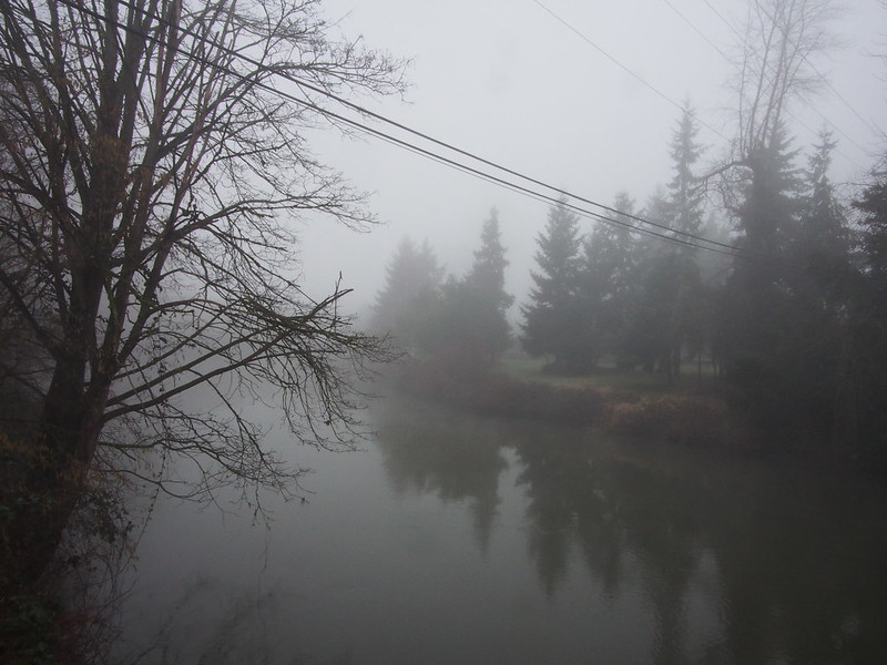 Duwamish River in Tukwila: This fog continuously deposits ice on most surfaces, which has made the mornings this season some of the worst times for riding I've ever experienced.