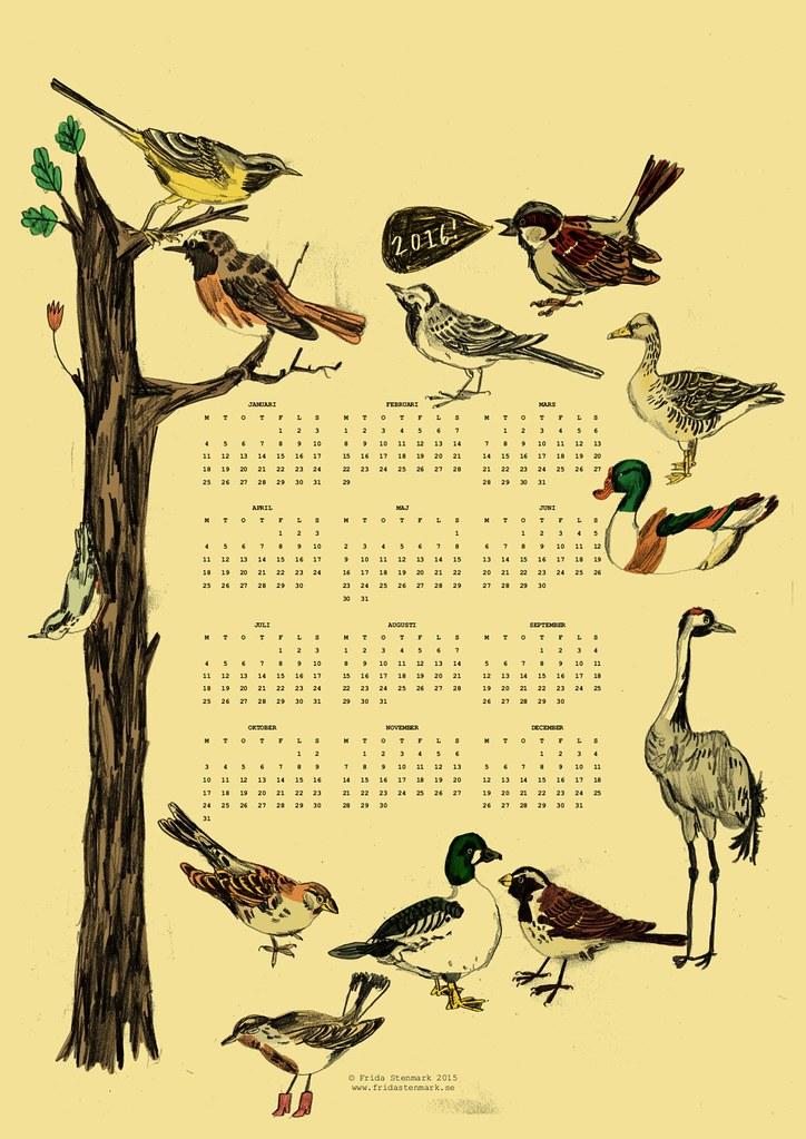 fågelkalender 2016