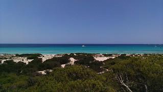 Image of Platja de Es Trenc Es Trenc Beach near Ses Salines.