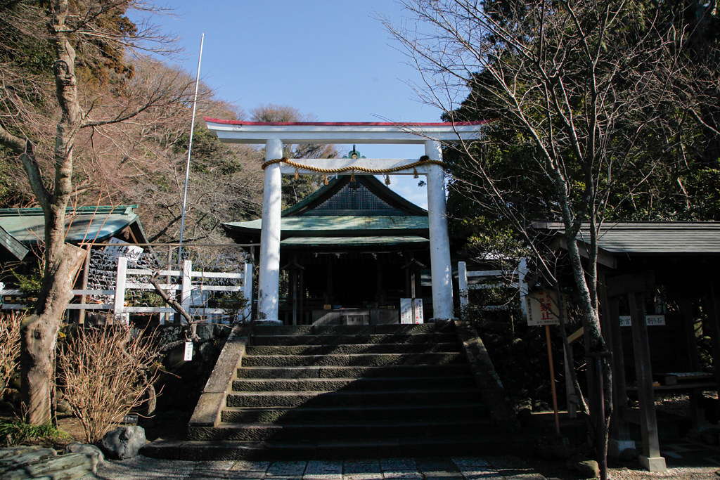 kamakuragu1604136