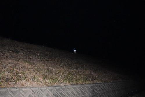 ライトトラップ.20150424.2345