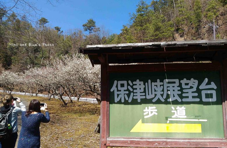 日本嵐山高雄保津川26