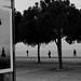 IMG_2740b by Eleni Mahera