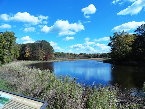 Minnie Pond Campground