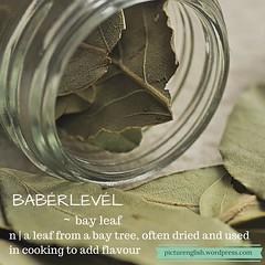 Bay leaf / Babérlevél