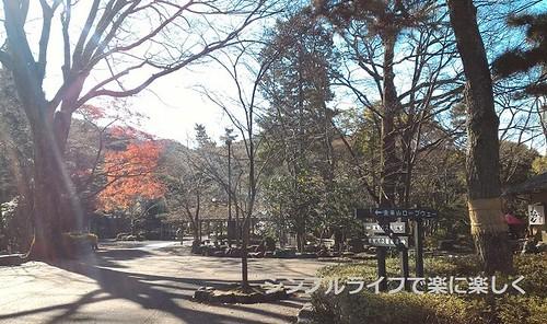 2016.1金華山、岐阜公園