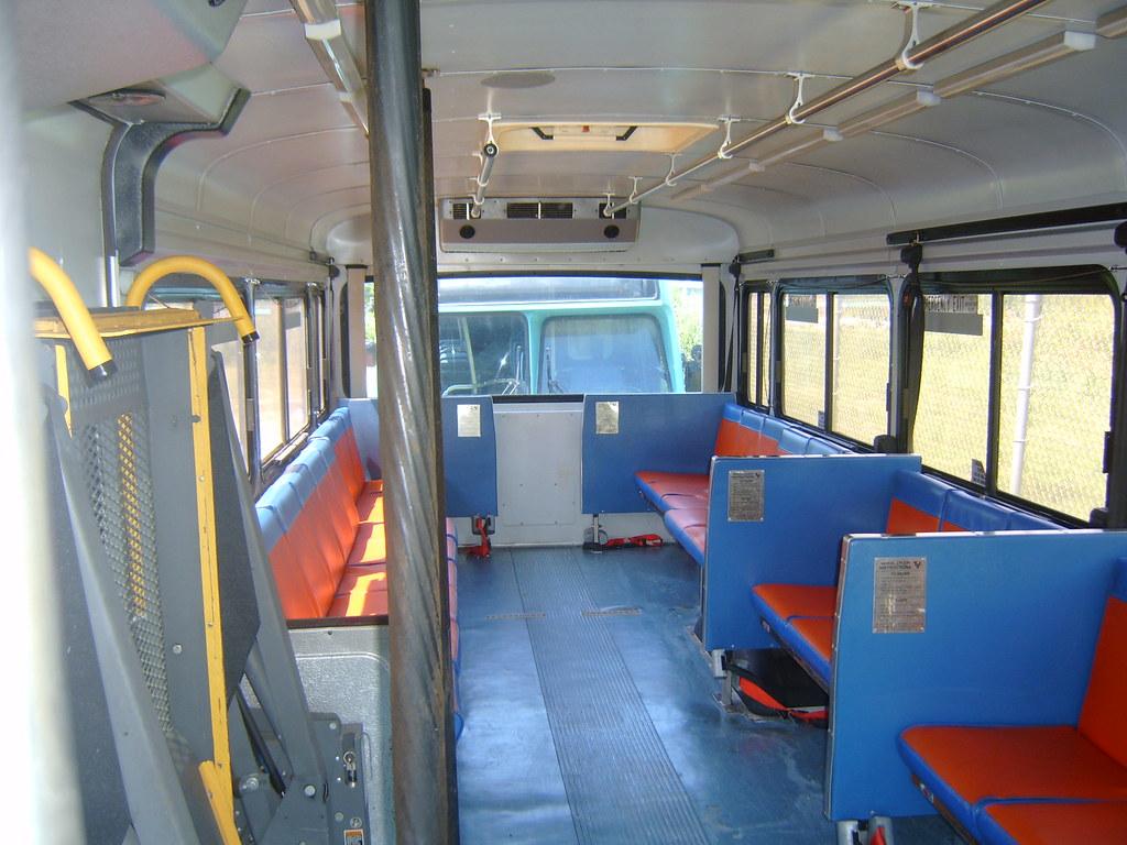 Blue Bird buses in Gainesville Regional Transit System