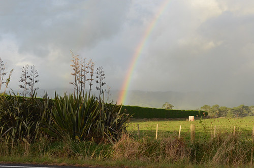 A Rainbow Over New Zealand Countryside