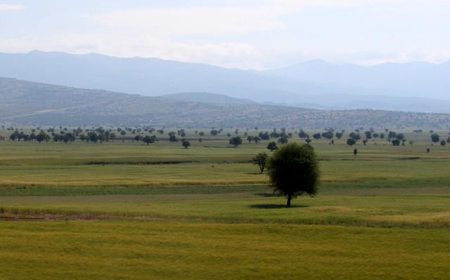 turkish landscape (2)