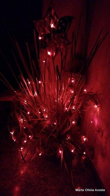 Arboles de Navidad y Decoraciones para aprender e inspirar