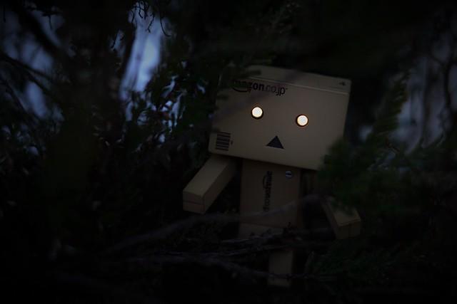 [Galerie commune] Danboard - Vos photos du petit robot en carton 23965634131_622f84027e_z