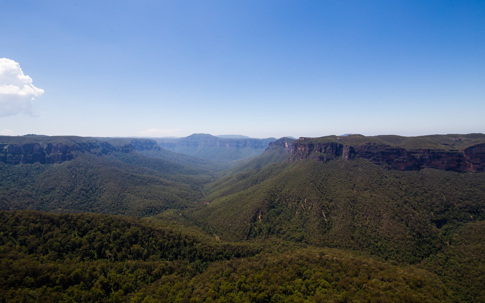 Blue Mountains-8656