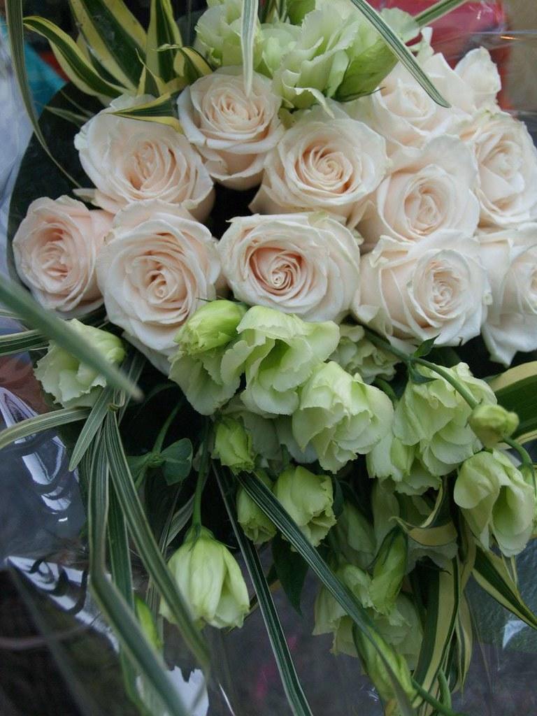 Each 1 dozen Ecuador roses
