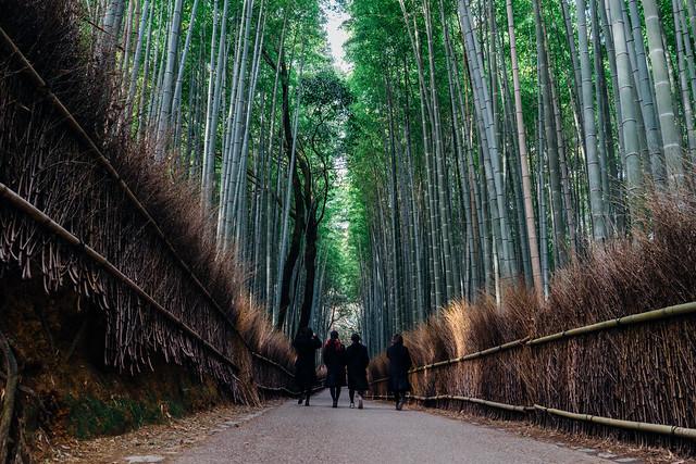 kyoto_arashimaya_07