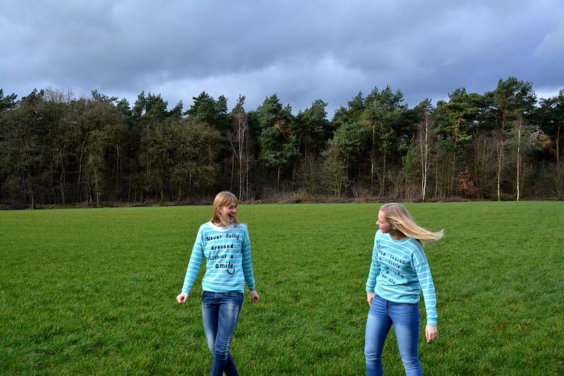 Sister twinning
