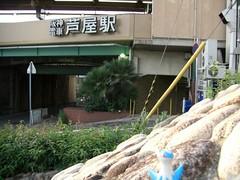 Latios in Ashiya, Hyogo 1