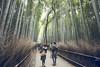 Photo:[Kansai] By mcdyessjin (Yu-Jen Shih)