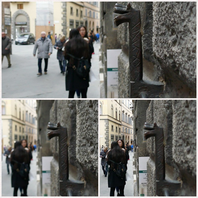 Snake hook post-focus montage in Siena, Italy