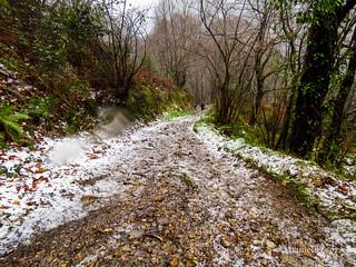 Camino Primitivo Etapa 3