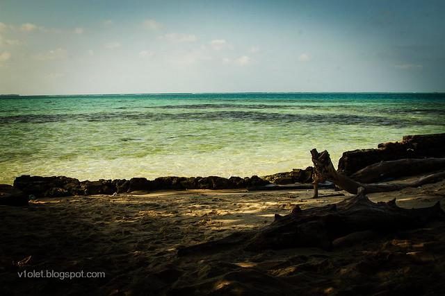 Pulau Semak Daun3-2250rw