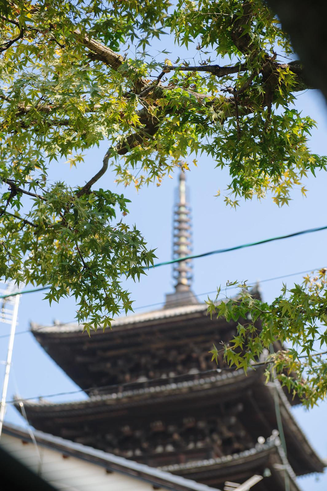 2015VQ@Kyoto-617