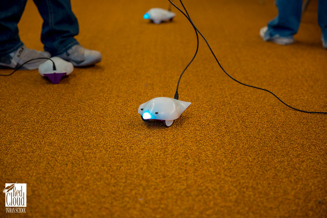 Students Discover Possibilities with Robots!