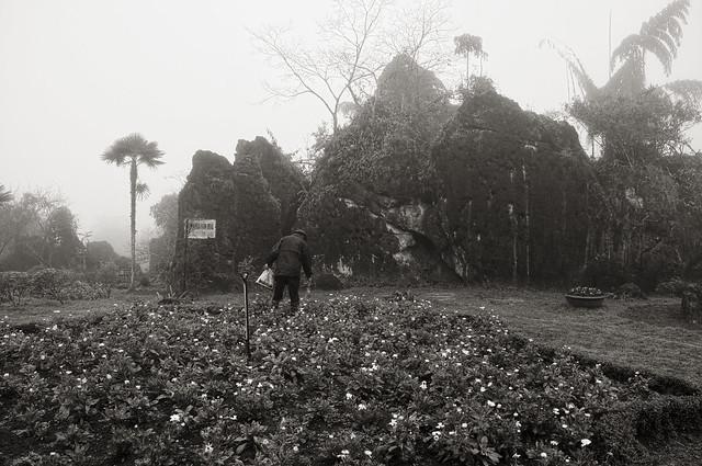Planting a garden in Ham Rong mountain
