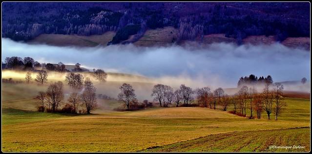 Fin d'après-midi dans la brume.