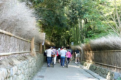 Bamboo Entrance