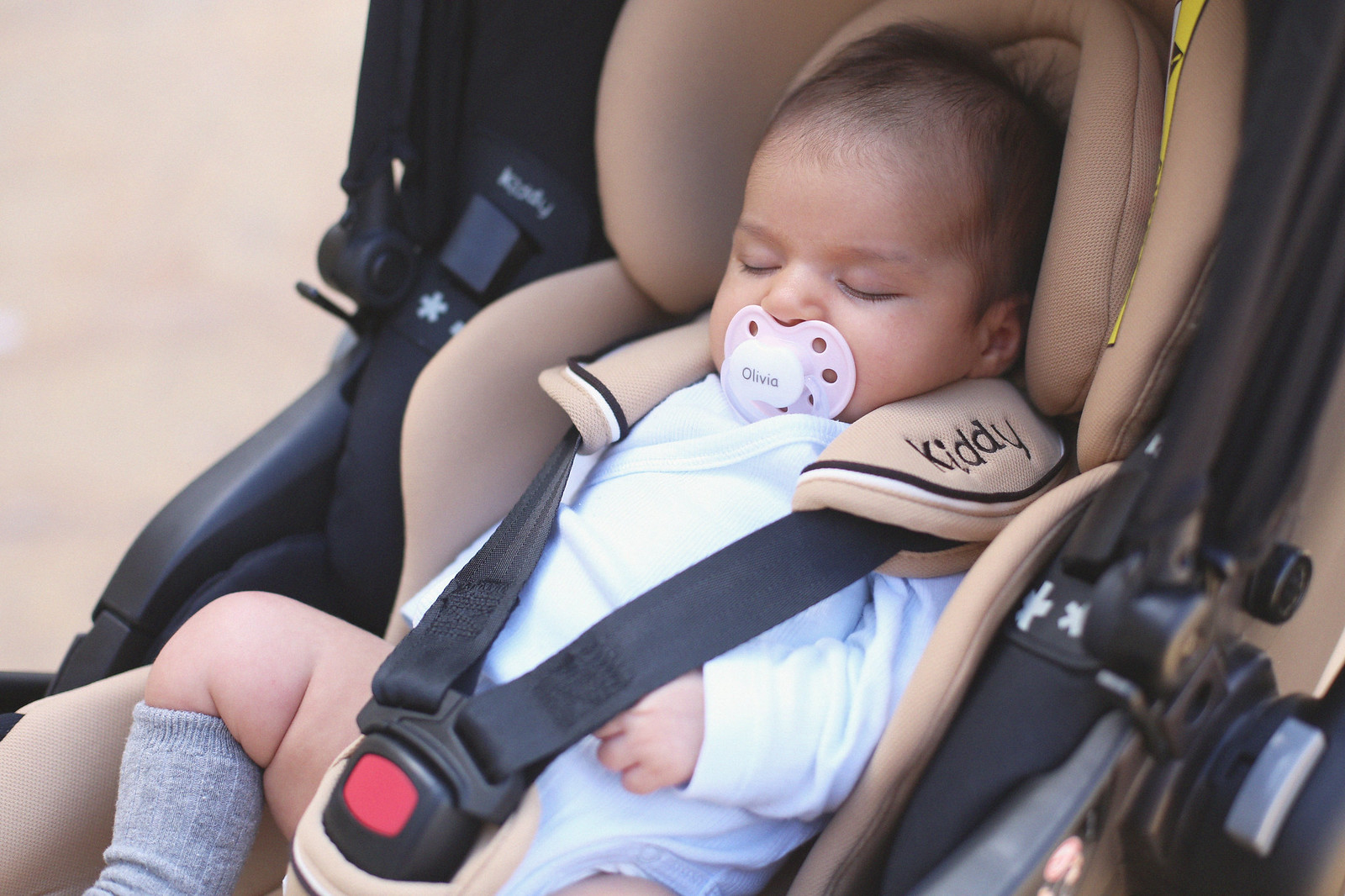 jessie chanes maternity - 4