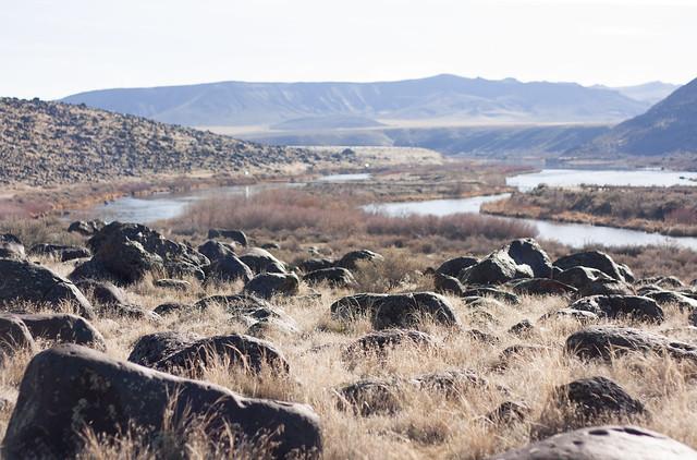 Volcanic Graveyard - Snake River Idaho