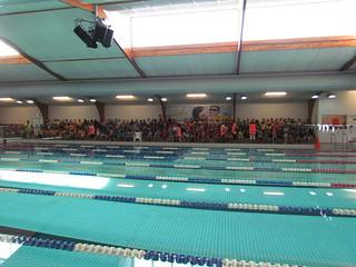 2016 Swimming Sports