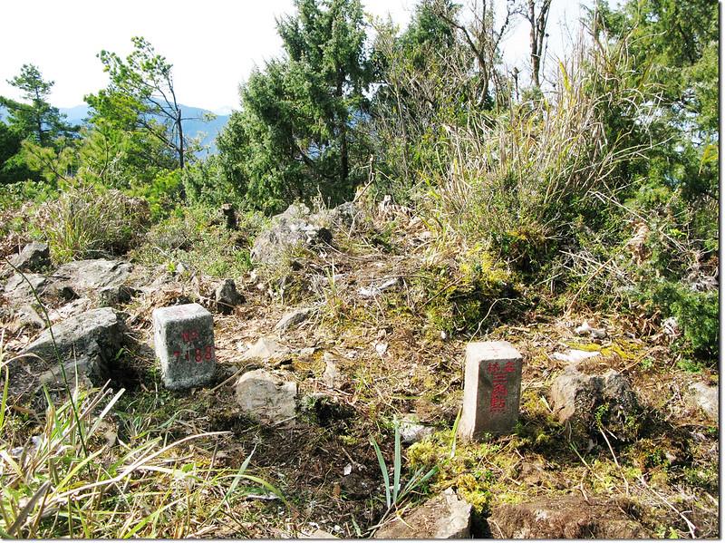 斯拉巴庫山三等原點與新出土的森林三角點並列