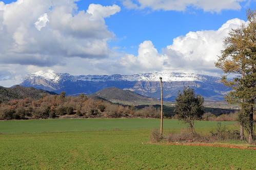 Palo Huesca.